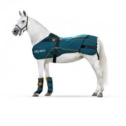 BEMER Horse-Set